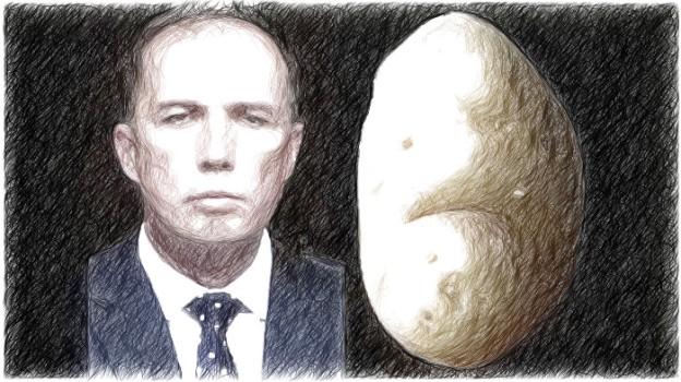 2016-05-19_potatoe-head