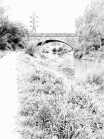 merri-creek-soft-lines